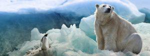 umweltschutz-vitalogue